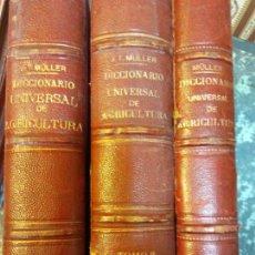 Diccionarios antiguos: STQ. DICCIONARIO UNIVERSAL DE ARQUITECTURA. 3 TOMOS. J,T, MULLER. BARCELONA. BRUMART TU LIBRERIA.. Lote 146498922
