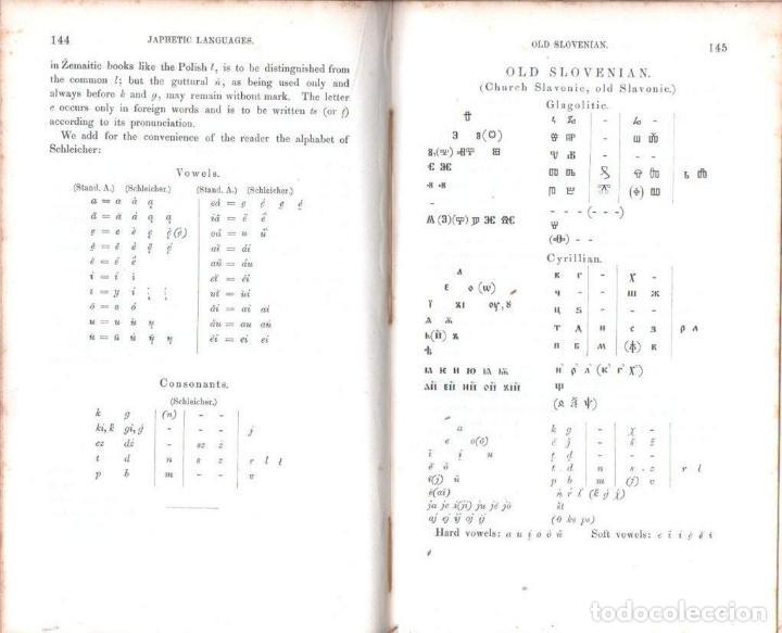 Diccionarios antiguos: LEPSIUS: STANDARD ALPHABET FOR REDUCING UNWRITTEN LANGUAGES AND FOREING GRAPHIC SYSTEMS (1863) - Foto 6 - 153432250