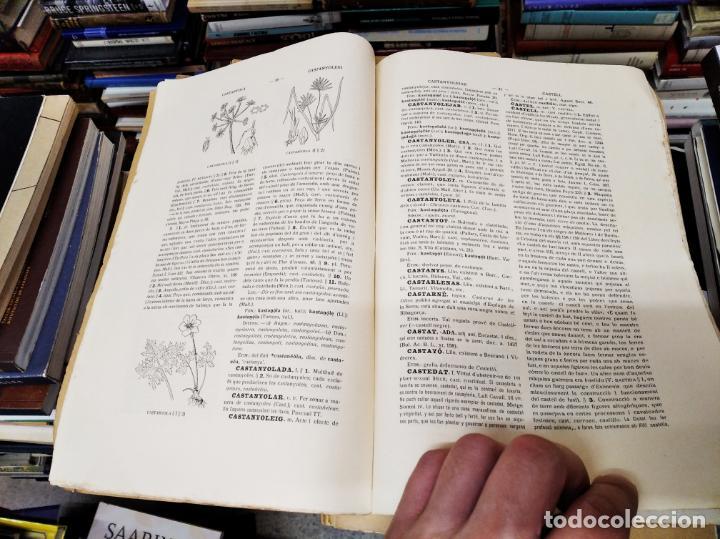 Diccionarios antiguos: IMPRESSIONANT LOT DE 7 FASCICLES DEL DICCIONARI CATALÀ - VALENCIÀ - BALEAR . 1935 - 1937 . MALLORCA - Foto 4 - 207038451
