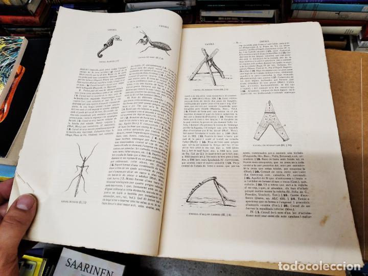 Diccionarios antiguos: IMPRESSIONANT LOT DE 7 FASCICLES DEL DICCIONARI CATALÀ - VALENCIÀ - BALEAR . 1935 - 1937 . MALLORCA - Foto 10 - 207038451