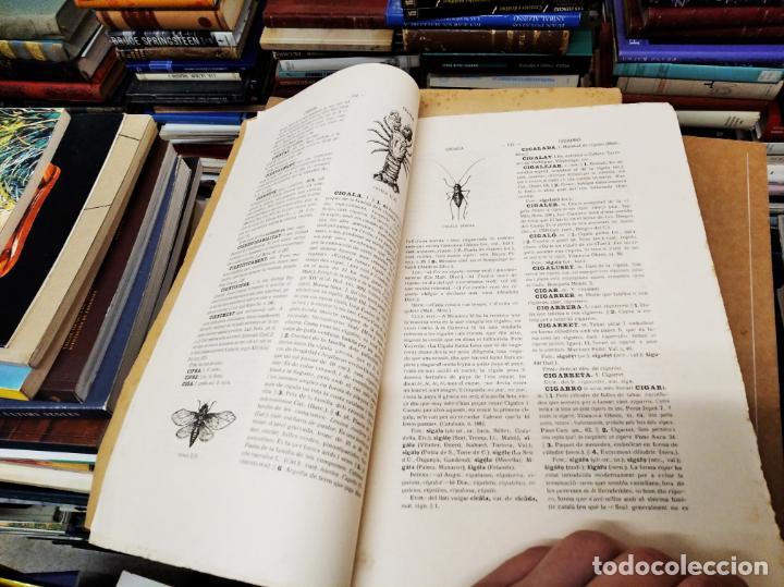 Diccionarios antiguos: IMPRESSIONANT LOT DE 7 FASCICLES DEL DICCIONARI CATALÀ - VALENCIÀ - BALEAR . 1935 - 1937 . MALLORCA - Foto 16 - 207038451