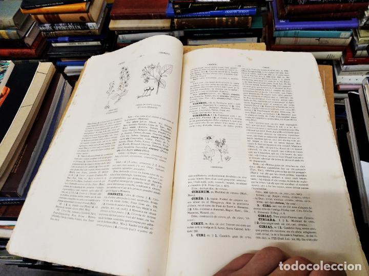 Diccionarios antiguos: IMPRESSIONANT LOT DE 7 FASCICLES DEL DICCIONARI CATALÀ - VALENCIÀ - BALEAR . 1935 - 1937 . MALLORCA - Foto 17 - 207038451