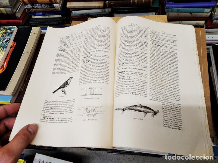 Diccionarios antiguos: IMPRESSIONANT LOT DE 7 FASCICLES DEL DICCIONARI CATALÀ - VALENCIÀ - BALEAR . 1935 - 1937 . MALLORCA - Foto 18 - 207038451