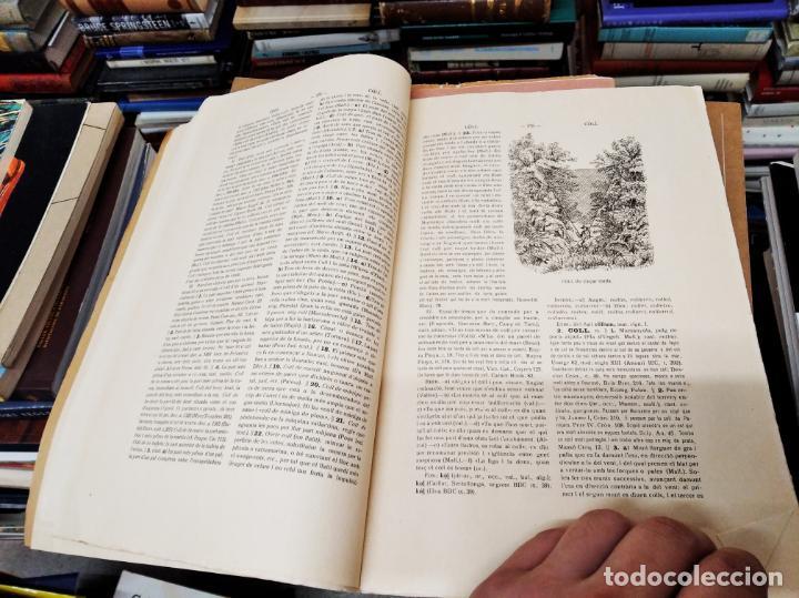 Diccionarios antiguos: IMPRESSIONANT LOT DE 7 FASCICLES DEL DICCIONARI CATALÀ - VALENCIÀ - BALEAR . 1935 - 1937 . MALLORCA - Foto 32 - 207038451
