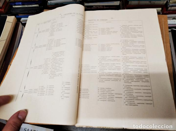 Diccionarios antiguos: IMPRESSIONANT LOT DE 7 FASCICLES DEL DICCIONARI CATALÀ - VALENCIÀ - BALEAR . 1935 - 1937 . MALLORCA - Foto 43 - 207038451