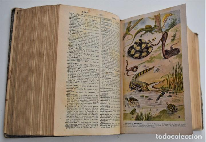 Diccionarios antiguos: DICCIONARIO ENCICLOPÉDICO ILUSTRADO - JOSÉ ALEMANY - LIMPIDA FONS - RAMÓN SOPENA, EDITOR 1932 - Foto 11 - 207305422