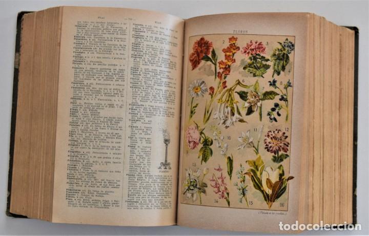 Diccionarios antiguos: NUEVO DICCIONARIO MANUAL, ILUSTRADO, DE LA LENGUA CASTELLANA - SATURNINO CALLEJA 1914 - Foto 12 - 212382680