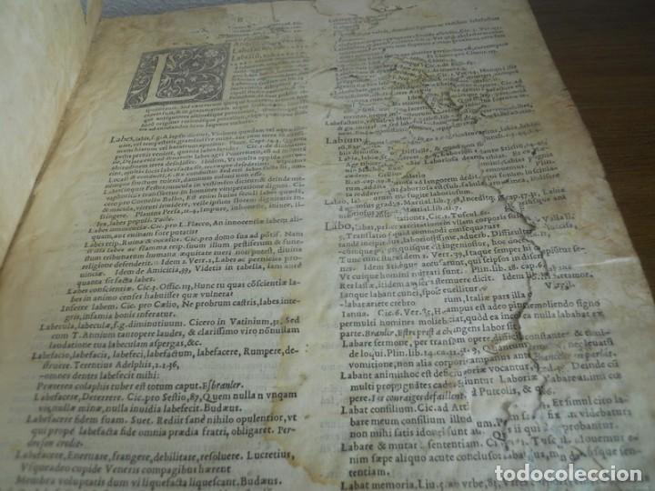 Diccionarios antiguos: DICTIONARII SIVE LINGUAE LATINAE. SECUNDA PARS. ROBERT ESTIENNE. PARIS, 1536 DICCIONARIO LATÍN - Foto 7 - 227712995