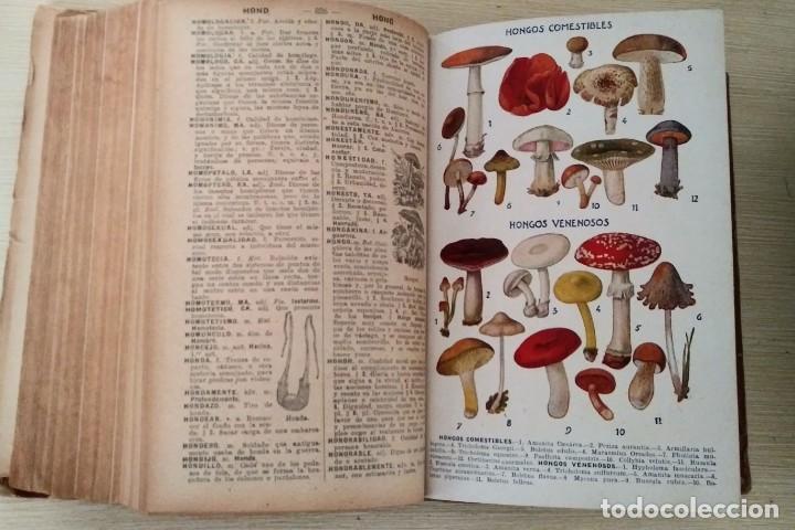 Diccionarios antiguos: DICCIONARIO ENCICLOPÉDICO ILUSTRADO DE LA LENGUA ESPAÑOLA 1927 Ramón Sopena - Foto 12 - 249257590