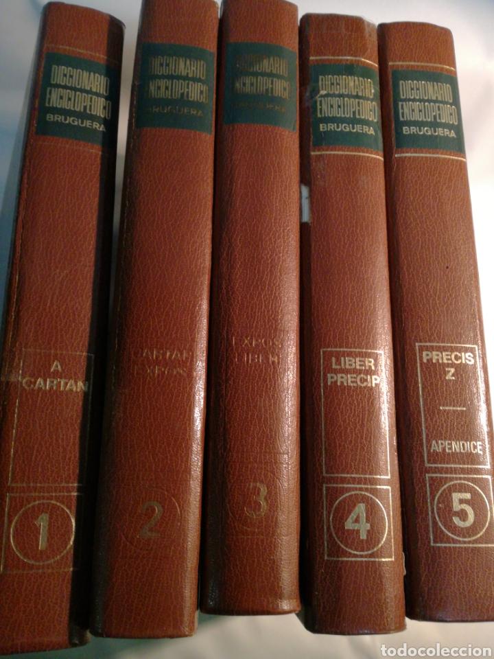 DICCIONARIO ENCICLOPEDICO BRUGUERA (Libros Nuevos - Diccionarios y Enciclopedias - Diccionarios)