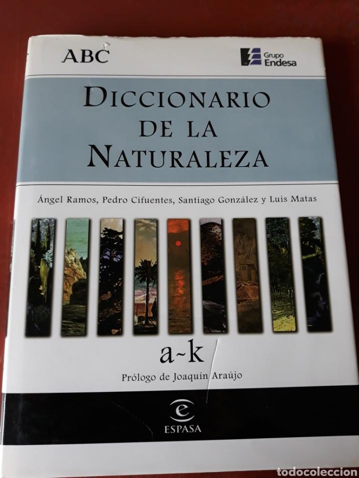 Diccionarios: Lote diccionarios varios. - Foto 9 - 158941281