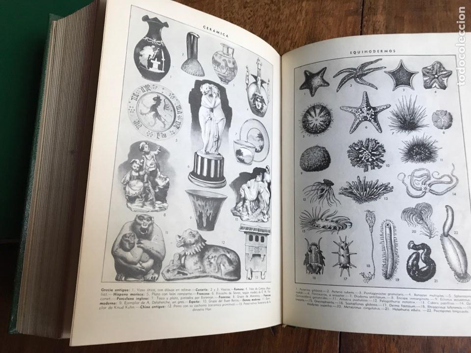 Diccionarios: Diccionario Enciclopédico Ilustrado . Ramon Sopena 1962 - Foto 6 - 177945810