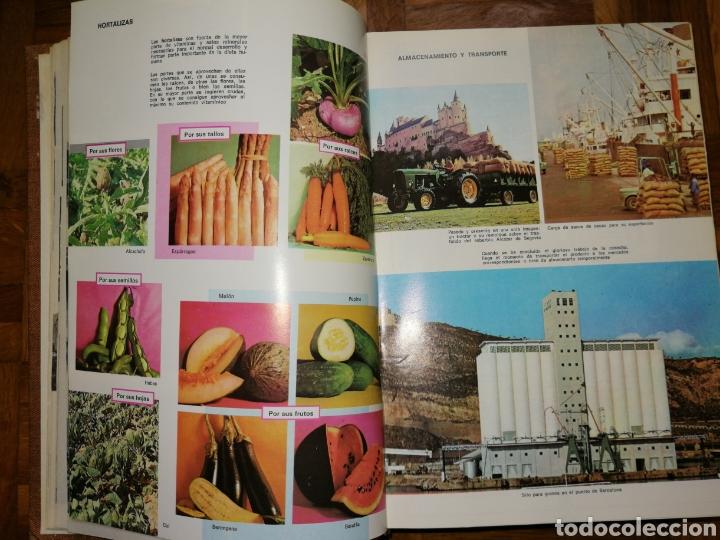 Diccionarios: Diccionario Enciclopedico Sopena Color 1 - Foto 4 - 182259375