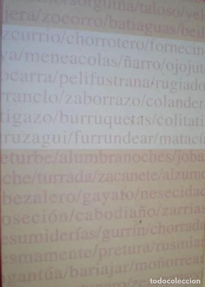 Diccionarios: VOCABULARIO NAVARRO.JOSE MARÍA IRIBARREN.DIARIO DE NAVARRA. SIN DESPRECINTAR. - Foto 2 - 213504272