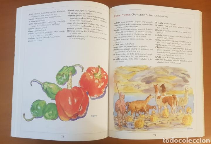 Diccionarios: Diccionario ilustrado AYMARA. - Foto 3 - 217269366