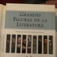 Diccionarios: DICCIONARIO ENCICLOPEDIA GRANDE FIGURAS DE LA LITERATURA - LOTE 2 TOMOS. Lote 228212927