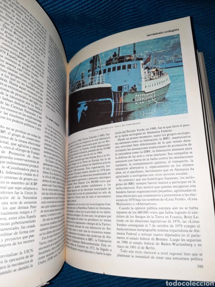 Diccionarios: DICCIONARIO DE LA NATURALEZA BBV 2003 - Foto 6 - 271119828