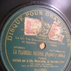 Discos de pizarra: DISCO DE PIZARRA GRAMOPHONE. LA PAJARERA NACIONAL (FOGLIETTI Y CORDOBA), CON MAYENDIA, CARRION, CORO. Lote 37438571
