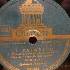 Discos de pizarra: PIZARRA !! QUINTETO TROPICAL. EL PAJARITO / EL TORITO. SELLO ODEON - 25 CM. ***. Lote 37449846