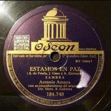 Discos de pizarra: DISCO 78 RPM - ANTONIO AMAYA - ZAMBRA - ESTAMOS EN PAZ - PIZARRA. Lote 88800368