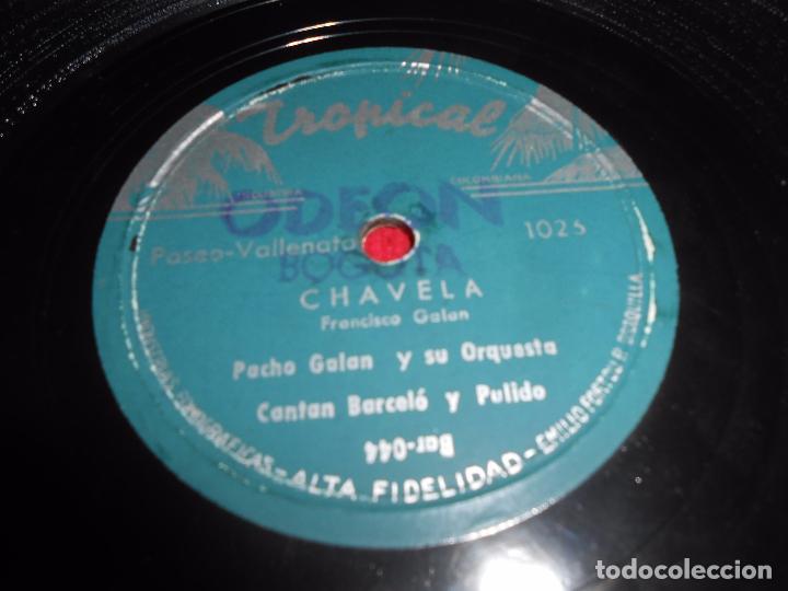 PACHO GALAN+BARCELO&PULIDO CHAVELA/ENTRE PALMERAS 10 PULGADAS 25 CTMS TROPICAL COLOMBIA PORRO LATIN (Música - Discos - Pizarra - Otros estilos)