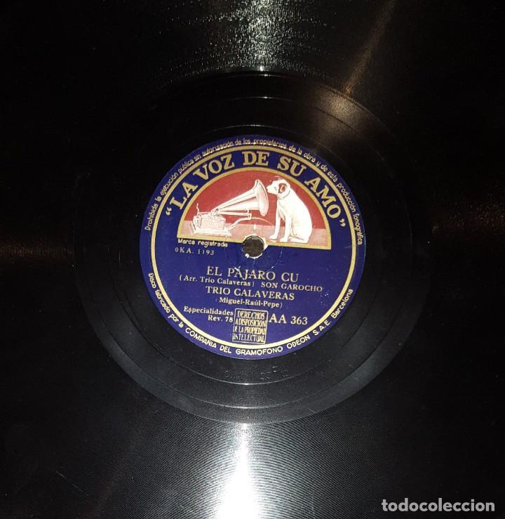 DISCOS 78 RPM - TRÍO CALAVERAS - SON HUASTECO - SON GAROCHO - EL PÁJARO CU - PIZARRA (Música - Discos - Pizarra - Solistas Melódicos y Bailables)