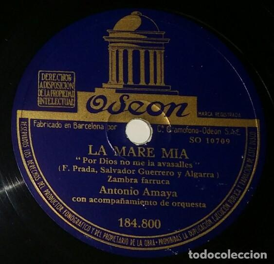 DISCOS 78 RPM - ANTONIO AMAYA - ORQUESTA - ZAMBRA FARRUCA - LA MARE MIA - PASODOBLE - PIZARRA (Música - Discos - Pizarra - Flamenco, Canción española y Cuplé)