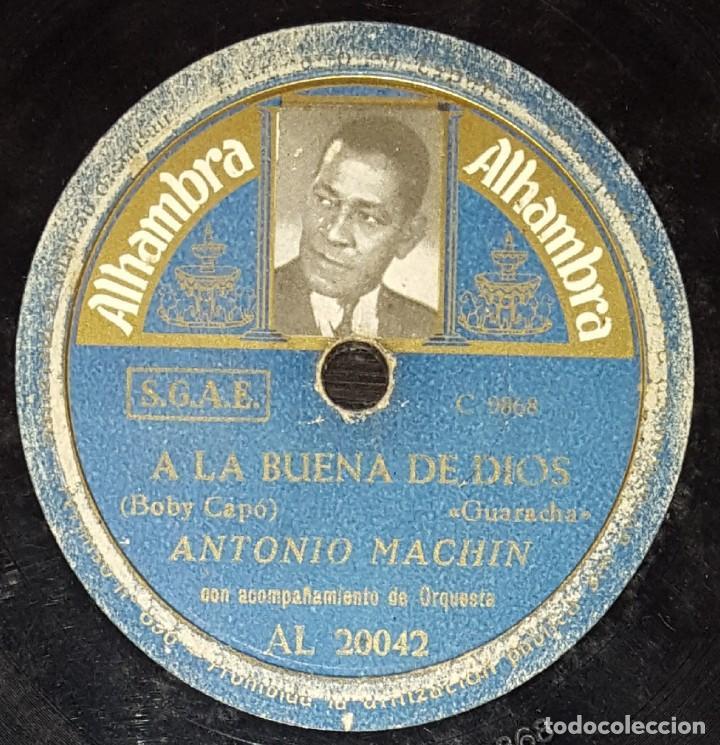 DISCOS 78 RPM - ANTONIO MACHÍN - ORQUESTA - GUARACHA - A LA BUENA DE DIOS - PIEL CANELA - PIZARRA (Música - Discos - Pizarra - Solistas Melódicos y Bailables)