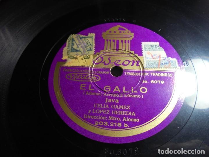 Discos de pizarra: magnifico antiguo disco de pizarra EL GALLO cancion java de celia gomez y lopez heredia - Foto 3 - 144408614