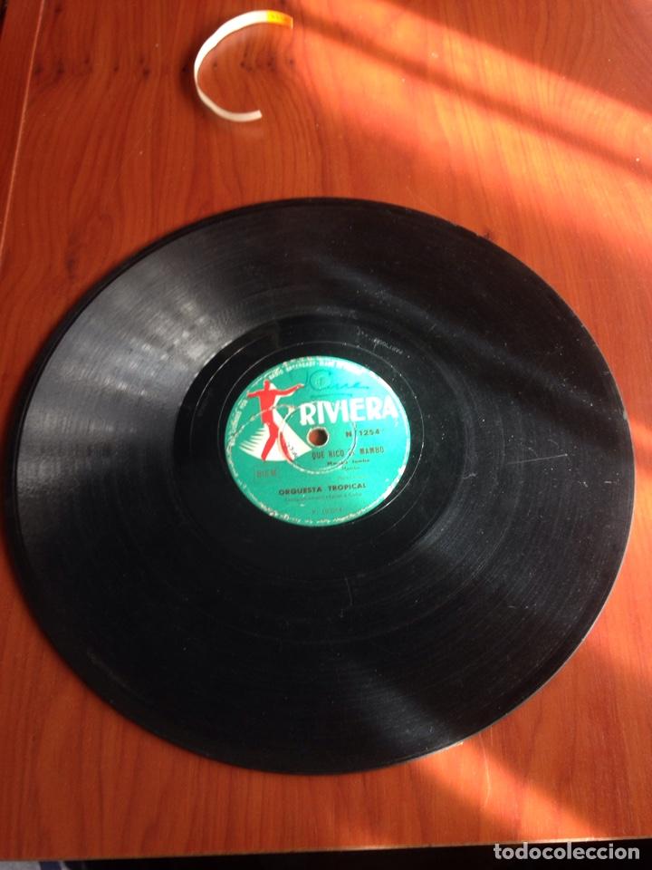 Discos de pizarra: Que rico el mambo - Foto 2 - 160154322