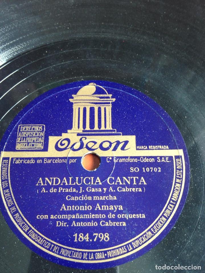 ANDALUCÍA CANTA ANTONIO AMAYA (Música - Discos - Pizarra - Flamenco, Canción española y Cuplé)