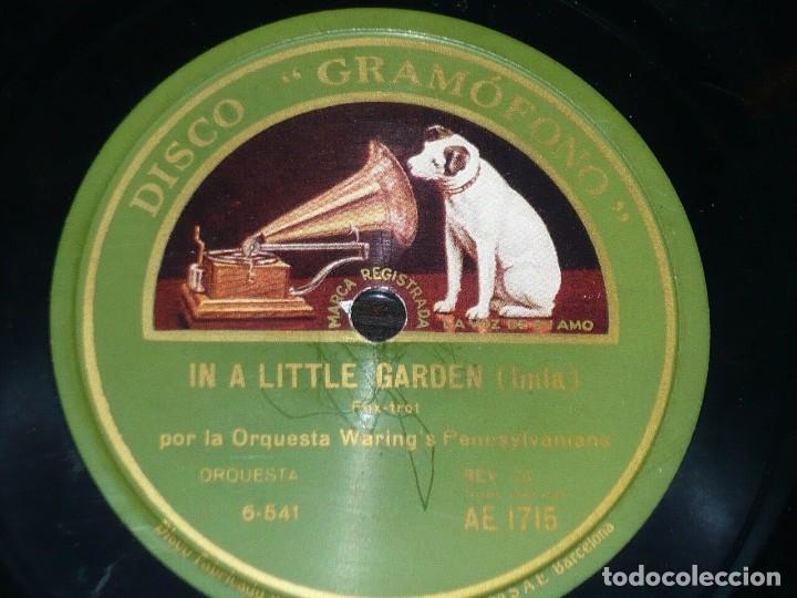 DISCO 78 RPM - GRAMOFONO - ORQUESTA WARING´S PENNSYLVANIANS - IN A LITTLE GARDEN - JAZZ - PIZARRA (Música - Discos - Pizarra - Jazz, Blues, R&B, Soul y Gospel)
