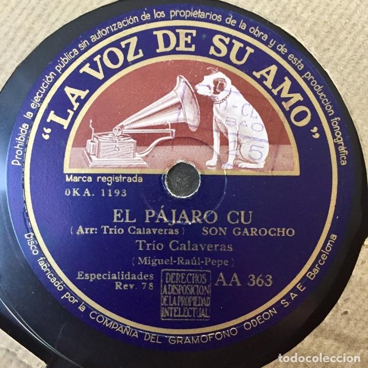 Discos de pizarra: LOTE TRIO CALAVERAS DISCO PIZARRA PLEGARIA GUADALUPANA PAJARO CU Y CATALOGO DISCOS 1948 - Foto 7 - 179023250