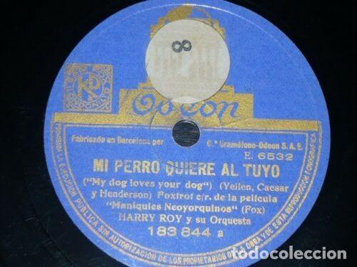 DISCO 78 RPM - ODEON - HARRY ROY - ORQUESTA - MI PERRO QUIERE AL TUYO - MAL HOMBRE - JAZZ - PIZARRA (Música - Discos - Pizarra - Jazz, Blues, R&B, Soul y Gospel)