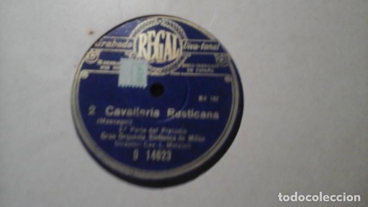 Discos de pizarra: Archivador de discos de Pizarra Casa Zato para 12 discos, con 16 discos dentro - Foto 17 - 191384520