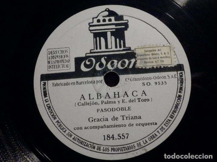 DISCO DE PIZARRA - ODEON 184.557 - GRACIA DE TRIANA - ALBAHACA - NO TE MALDIGO (Música - Discos - Pizarra - Flamenco, Canción española y Cuplé)