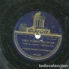 Discos de pizarra: ANTONIO MACHIN / CONOZCO A LOS DOS / CIEN FLORES BLANCAS (ODEON 184.639). Lote 205090808