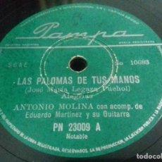 Discos de pizarra: ANTONIO MOLINA ACOMP. DE EDUARDO MARTINEZ- LAS PALOMAS DE TUS MANOS/ FANDANGUILLO- PAMPA-N°23009. Lote 205276991