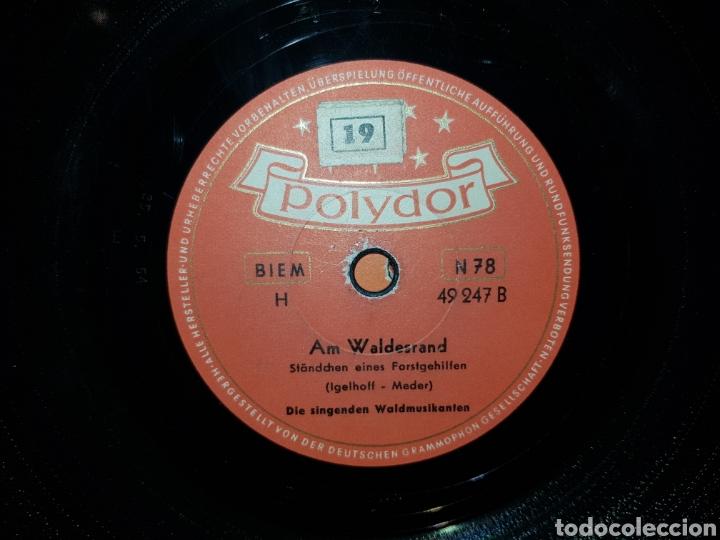 Discos de pizarra: Antiguo lote de discos de pizarra - Foto 23 - 205570978