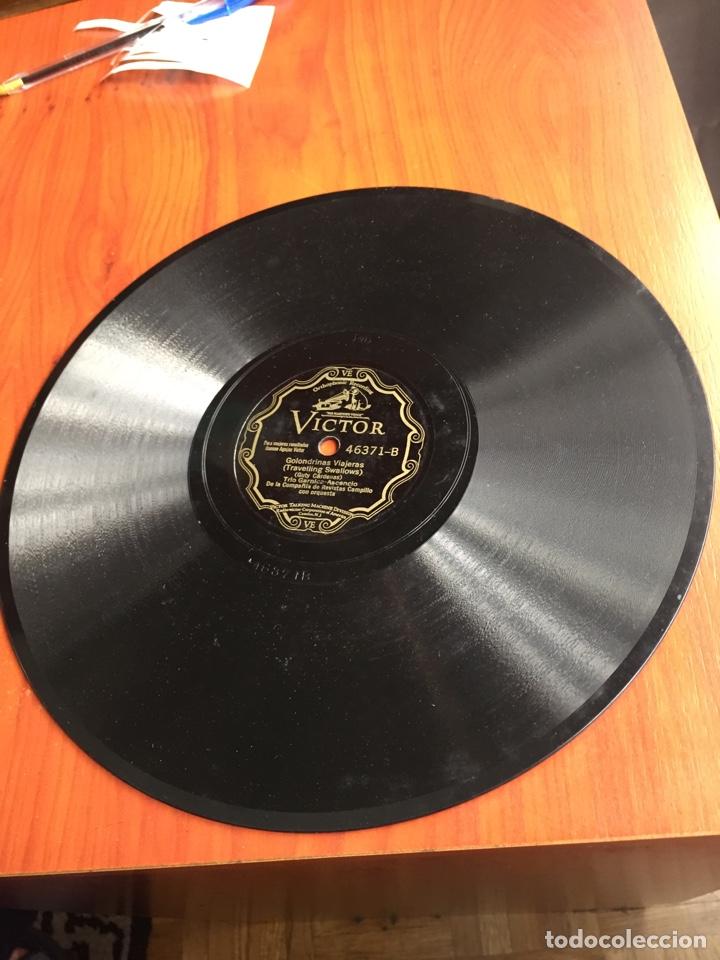 Discos de pizarra: Golondrinas viajeras - Foto 2 - 246914745
