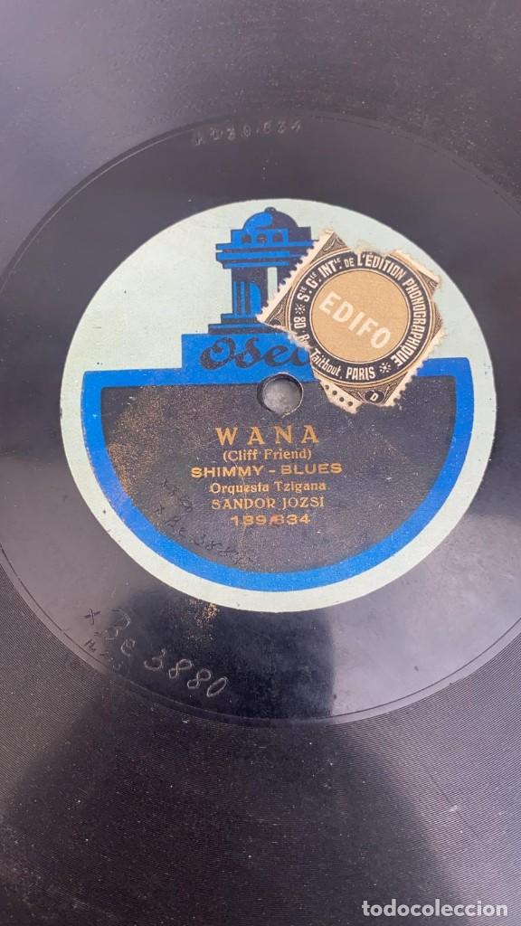 DISCO DE PIZARRA WANA SHIMY BLUES - LA JAVA JAVA DANCE ODEON (Música - Discos - Pizarra - Jazz, Blues, R&B, Soul y Gospel)