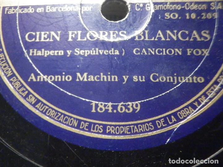 Discos de pizarra: PIZARRA Odeón 184.639 - Antonio Machin - Conozco a los dos - Cien Flores blancas - Foto 3 - 288388678