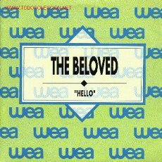 Discos de vinilo: THE BELOVED . Lote 667411