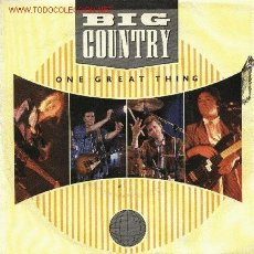 Discos de vinilo: BIG COUNTRY . Lote 667436