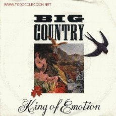 Discos de vinilo: BIG COUNTRY . Lote 667444