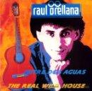Discos de vinilo: RAUL ORELLANA ··· THE REAL WILD HOUSE (WILD MIX) - (SINGLE 45 RPM) ··· VINILO NUEVO. Lote 27112968