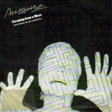 Discos de vinilo: AUTOPILOT-ESCAPING FROM A MAZE + NEW TERRAIN SINGLE CHRYSALIS 1981 SPAIN. Lote 87108604