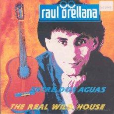 Discos de vinilo: RAUL ORELLANA - THE REAL WILD HOUSE / ENTRE DOS AGUAS - SINGLE ESPAÑOL DE 1989. Lote 9664741