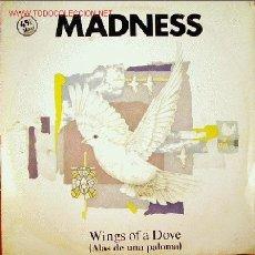 Discos de vinilo: MADNESS-WINGS OF A DOVE MAXI SINGLE VINILO PROMOCIONAL EDITADO POR VICTORIA EN 1983. Lote 2772811