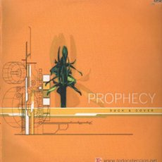 Discos de vinilo: PROPHECY - DUCK & COVER / BASIC ELEMENTS / CRAZY TIME - MAXISINGLE 2002. Lote 15925224